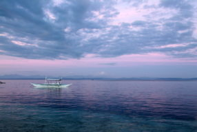 Filipiinid: Malapascua saare rebashaid ja kukepoks